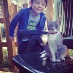 Di Ostia, un gattino e l'aria di vacanza