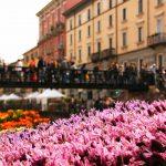 Oggi a Milano se non dovesse piovere: Navigli in fiore!